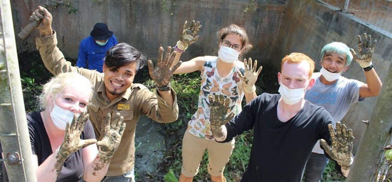 Animal care volunteer project Indonesia