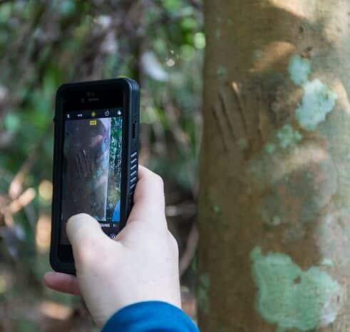 Virtual field trip citizen science fuze ecoteer