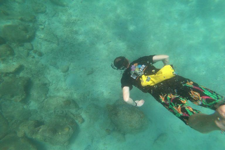 Marine biology university field trip Malaysia